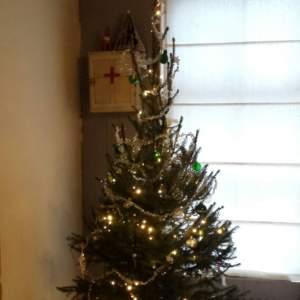 Kerstboom van Balstjurrich